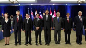 Explaining US Strategic Partnerships in the Asia-Pacific Region